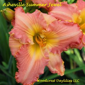 Asheville Summer Jewel